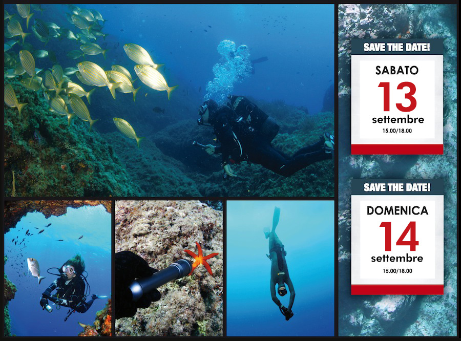 banner_diving