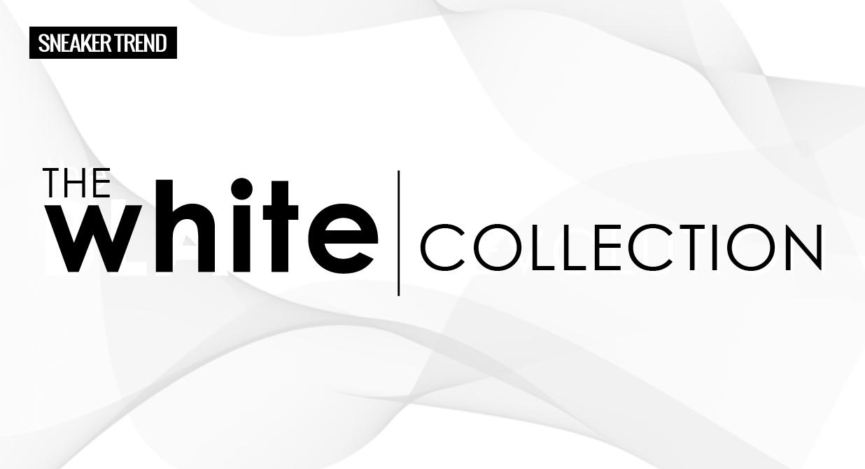 banner-maxinews-white